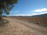 Resale - Finca / Country Property - Banyeres de Mariola