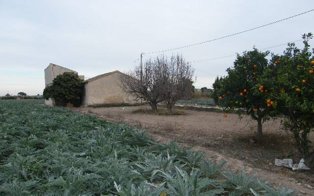 Country house - Resale - Formentera - Los Palacios