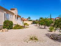 Resale - Finca - Catral