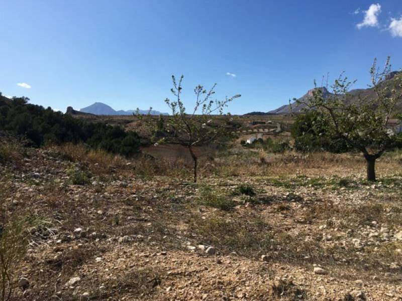 Resale - Plot - Murcia
