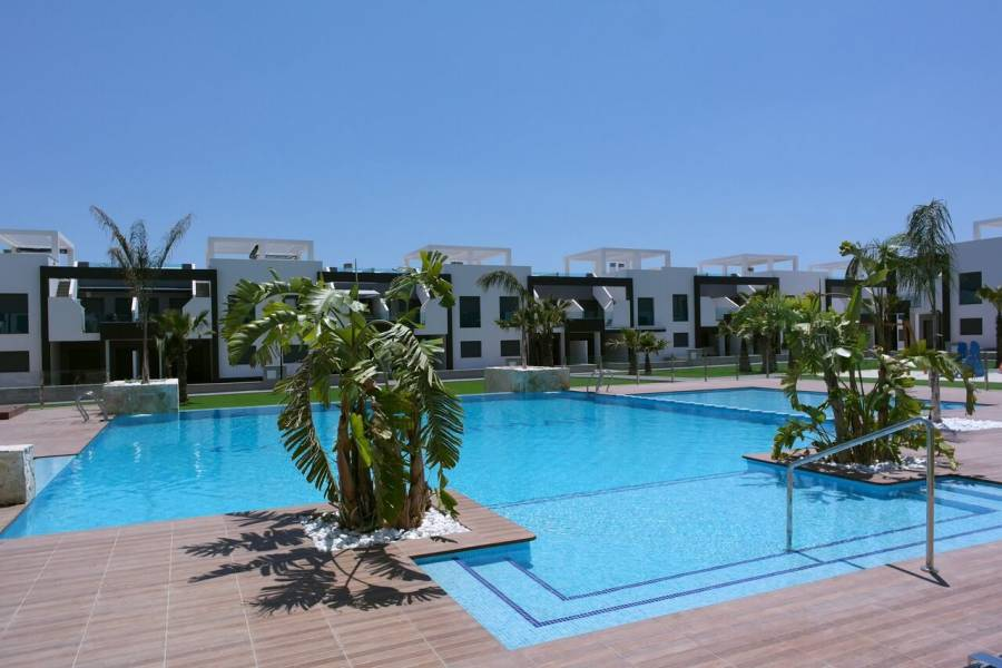 New - Apartment - El Raso